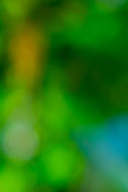 Steri & Hygiene - Wilen am Sarnensee 2020